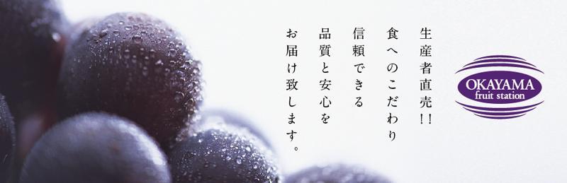 ぶどう生産者 岡山フルーツステーション