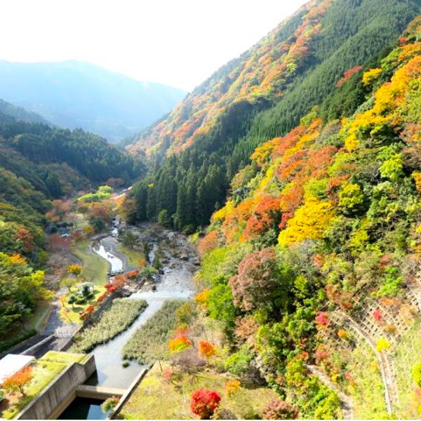 津川ダム公園の紅葉