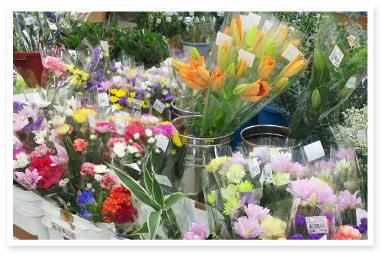 201509sunhill_photo03.png