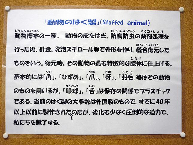 fushigi_hakusei_setumei.jpg